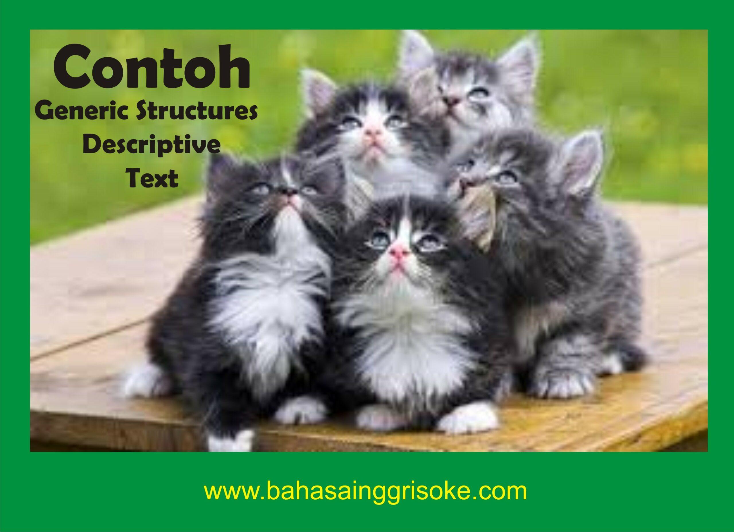 Contoh Generic Structure Descriptive Text Tentang Hewan, Tempat, Dan Orang