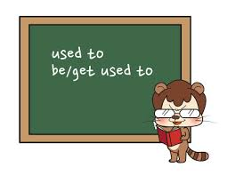 be used to modal verb
