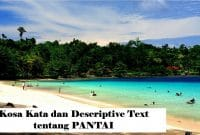 Kosa Kata dan Descriptive Text Singkat tentang Beach atau Pantai