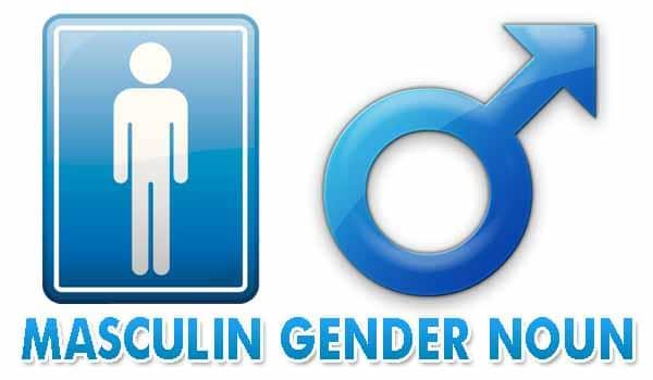 Masculine gender noun