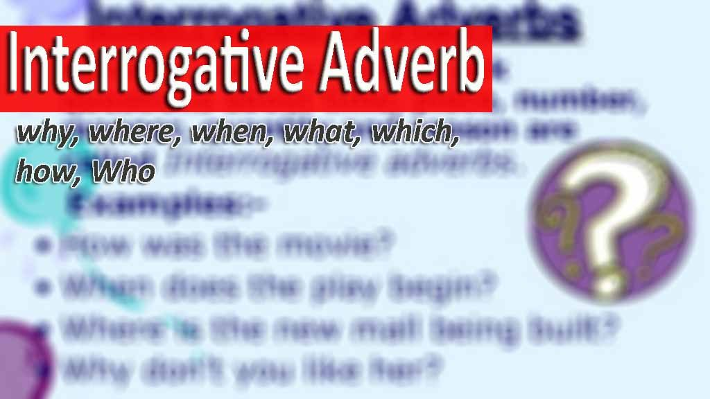penjelasan Interrogative Adverb