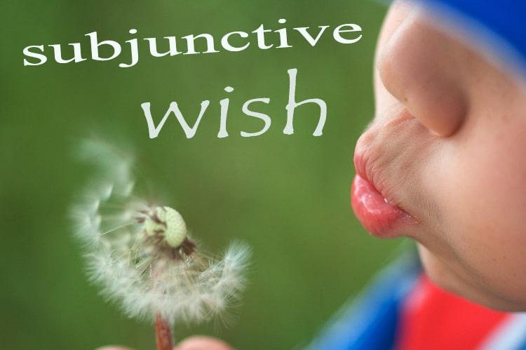 wish subjunctive2