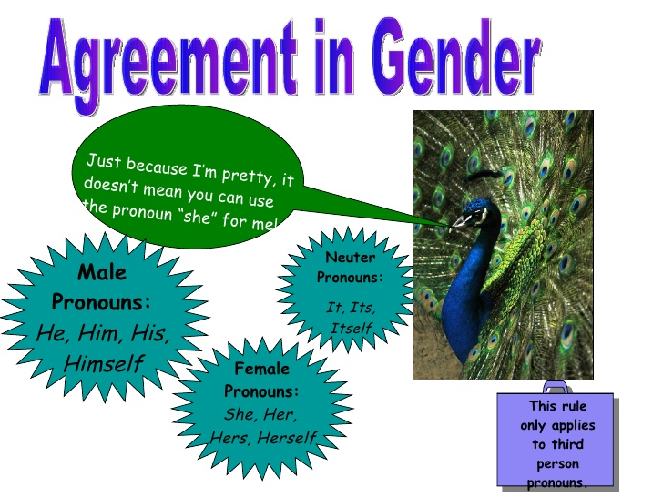 agreement gender