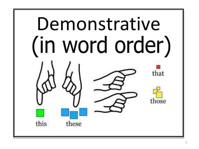 demonstrative-word order