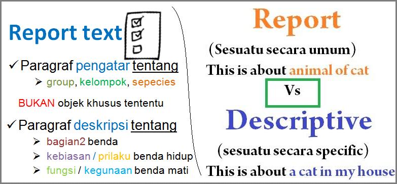 report text vs descriptiv