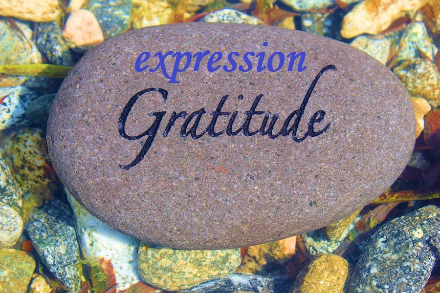 expression gratitude