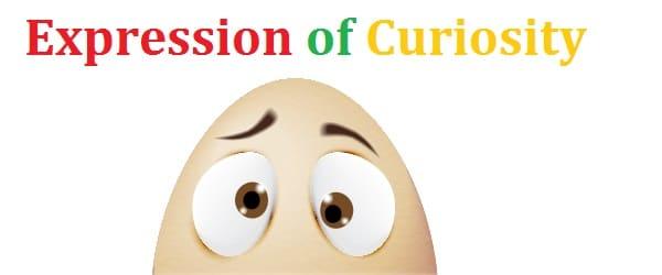 egg expresi